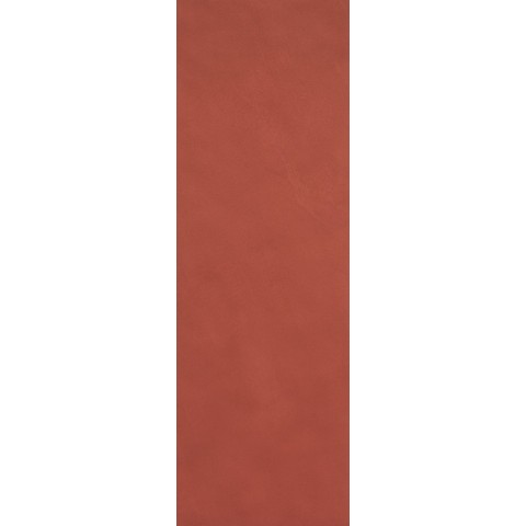 COLOR LINE MARSALA 25X75 MATT