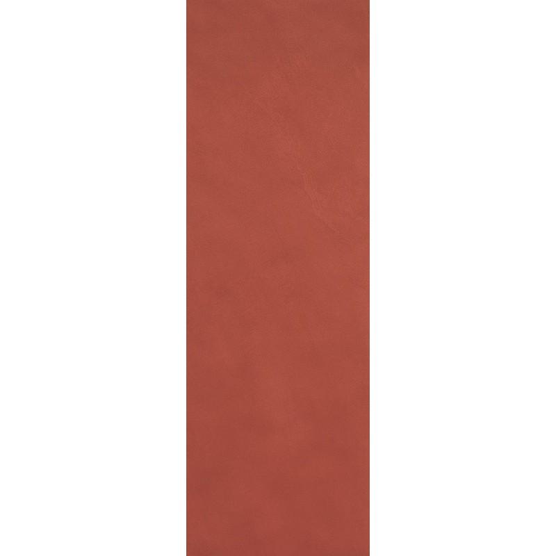 FAP CERAMICHE COLOR LINE MARSALA 25X75 MATT