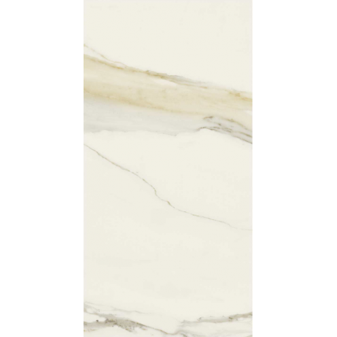 CALACATTA GOLD MATTE 60x120