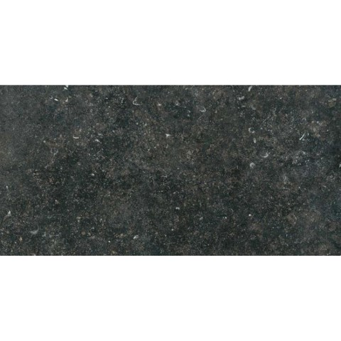 LONDON_BLACK NATURALE 30x60 SP 10mm