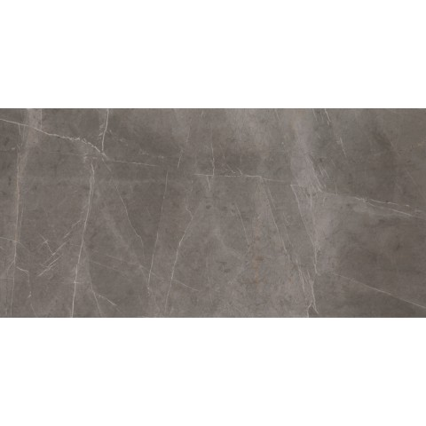 EVOLUTIONMARBLE GREY LUX 60X120 RETT