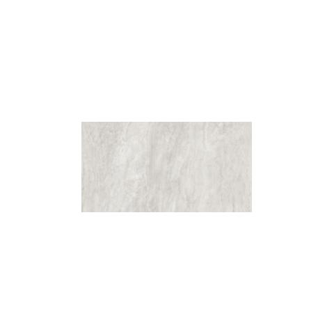 ENDLESS SILVER 30.4x61 RETTIFICATO