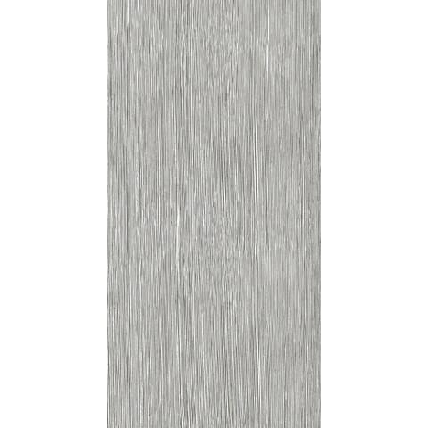 CAESAR JOIN PLUME GRAPH 30X60 RETTIFICATO R9 A