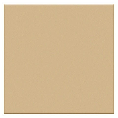 VOGUE IN BEIGE 20X20 (OPACA)