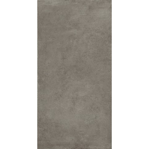 BOSTON ASH NATURALE 60X120 RETT