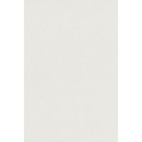 PROGRESS WHITE 25X38